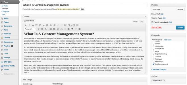 Wordpress CMS Screenshot